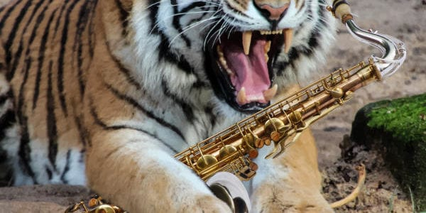Saxophone Growl